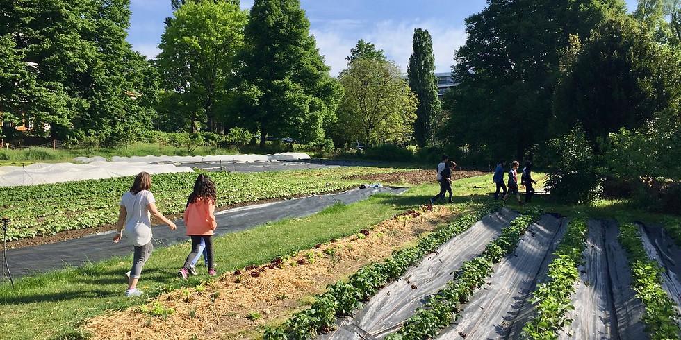 Ateliers et visite des jardins