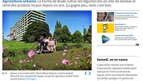 Tribune de Genève 10.2015