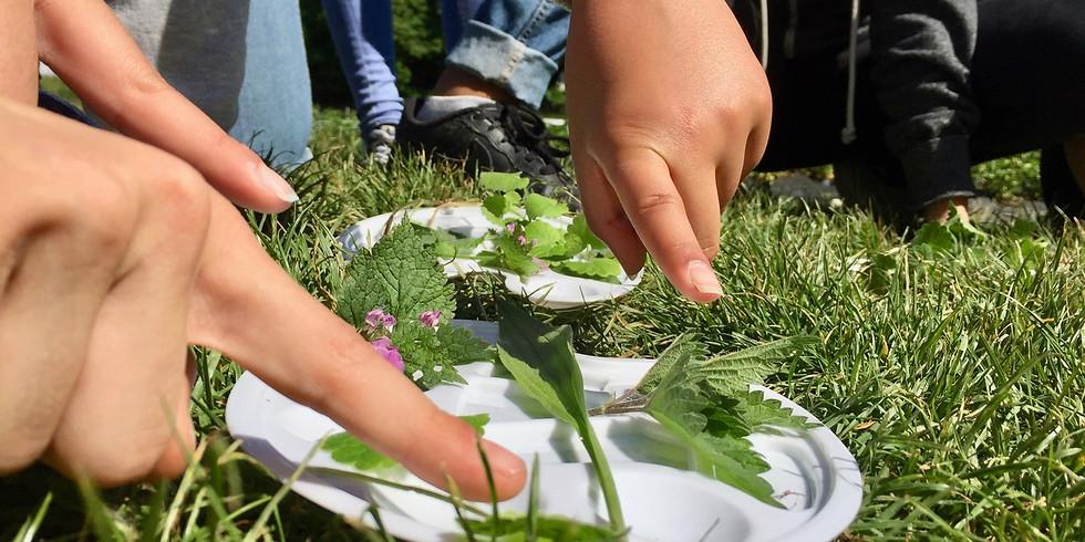 Atelier enfant - La Ferme et ses légumes