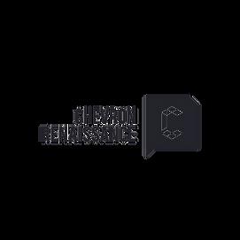 CHV logo transparent.png