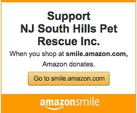 Amazon Smile Logo Large.png