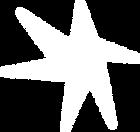 agradecimentos-card-star.png