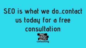 SEO free consultation