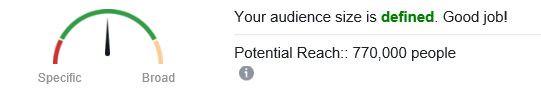 defining facebook audience