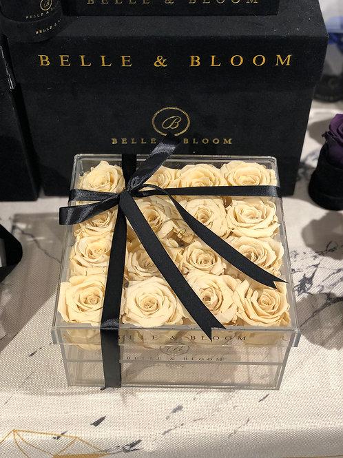 Infinity Le Belle Box - 16 Rose
