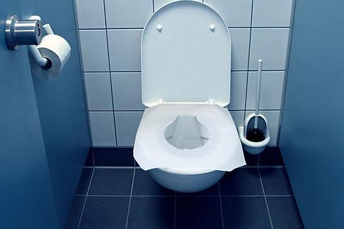 0_Blue-toilet-generic-cubicle (1).jpg