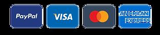 Minimal-Credit-Card-Icons_edited.png