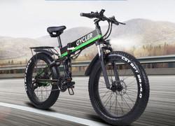 ALFINA FX 01 Electric mountain bike 48V1000W Power Bike