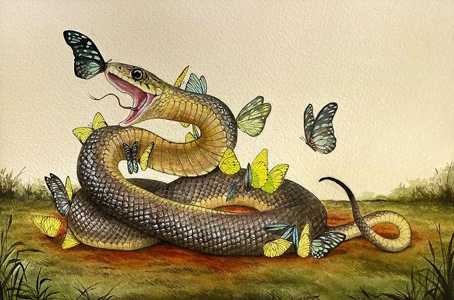 snake-butterflies-noframe.jpg