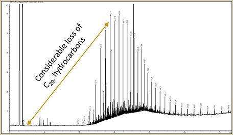 HAWK-GC chromatogram.JPG