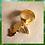 Thumbnail: Bague double anneaux 971, 972, 974, Africa