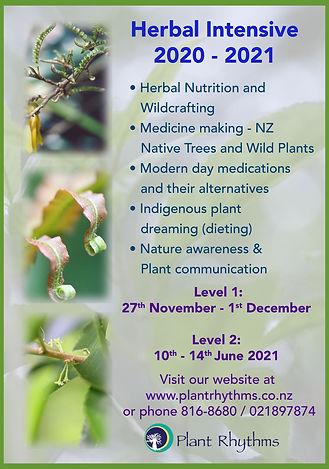 2020-2021 Shamanic Herbal Apprenticeship