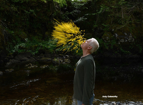 Inspiration andy_goldsworthy_thomas_riedelsheimer_le