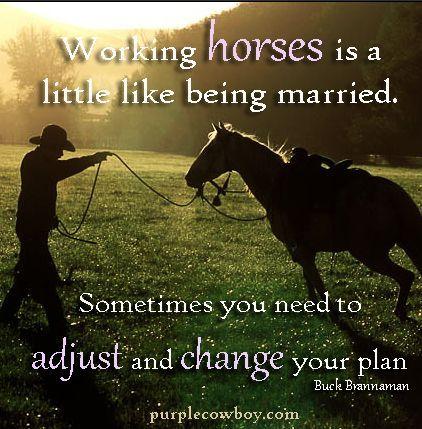 77c51155a84de8732935008d6beb430f--western-quotes-equestrian-quotes