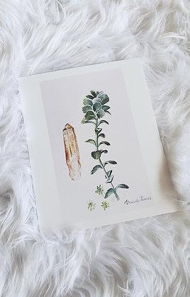Citrine + Succulent
