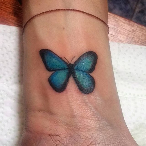 A sweet morpho butterfly on a sweet sist