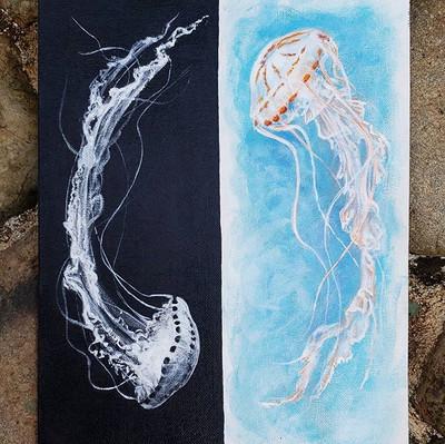 Yin yang jellyfish