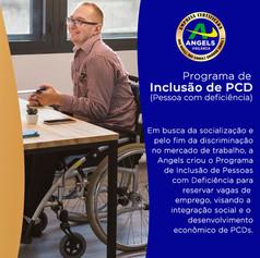 programa de pcd.jpg