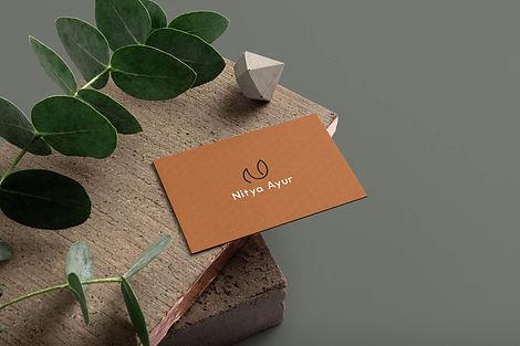 free-business-card-mockup-vol-5 copy.jpg