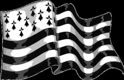 24042012-drapeau-breton.png