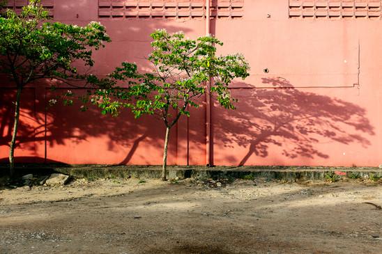 Photographe professionnel artiste aureli