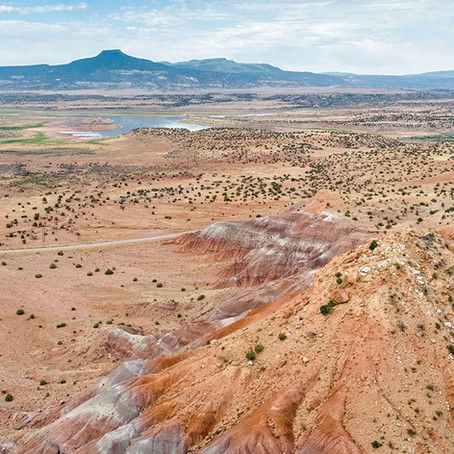Out of the Wild: New Mexico Beyond Santa Fe