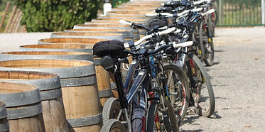 bike-barrels-Alentejo.jpg