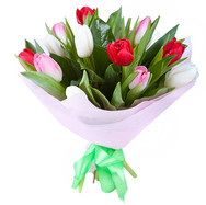 15 тюльпанов
