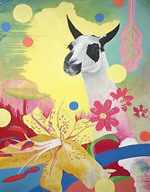 Baronet's The Lily and the Llama