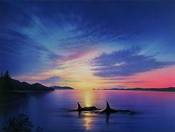 Reinert's Orcas.jpg