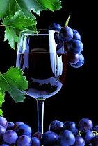 Red Wine photo.jpg