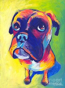 Paint your pet boxer.jpg