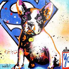 Paint YourPet Super Pet.jpg