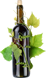 vine & canvas grapes and bottle.png