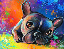 paint your pet french bulldog.jpg