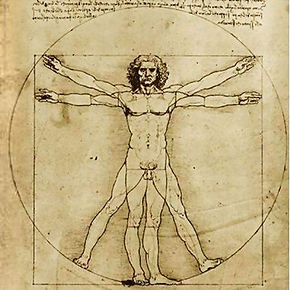Da Vinci Vitruvian Man.jpg