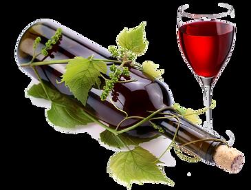 vine & canvas bottle and vine.png