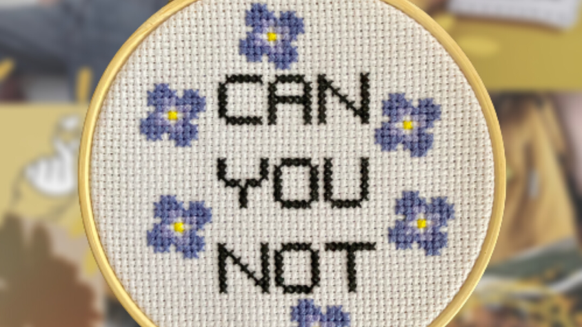 Can You Not   Cross Stitch Hoop