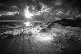 clyde butchers sand dune florida