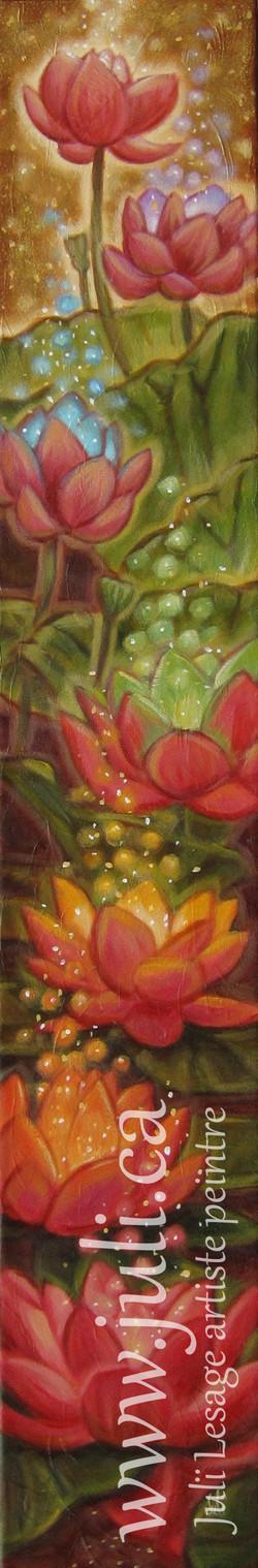 lotus de vie6x36