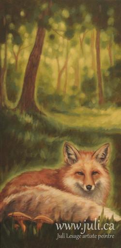 le renard 12x24