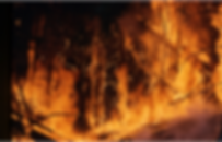 wildfire 1.png
