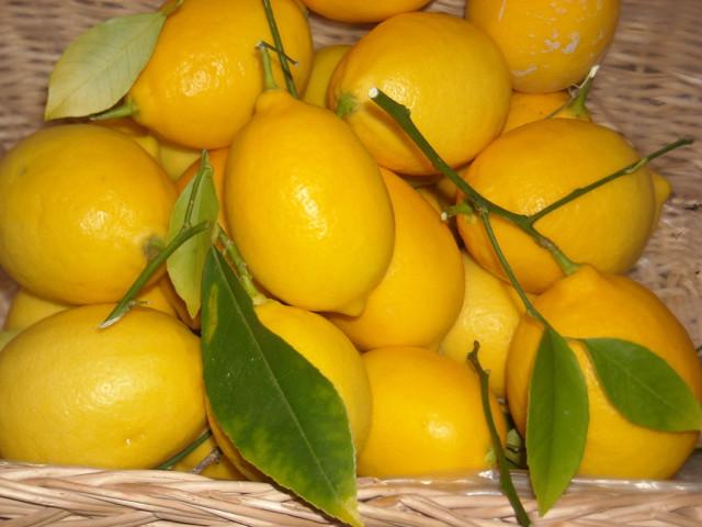 Lemon essential oils invigorate