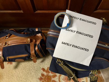 Emergency Go-Bag, Essential Lessons for Kids, Frightening Foxtails