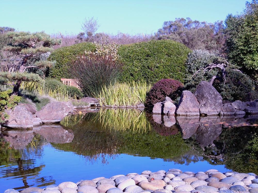Garden serenity pool