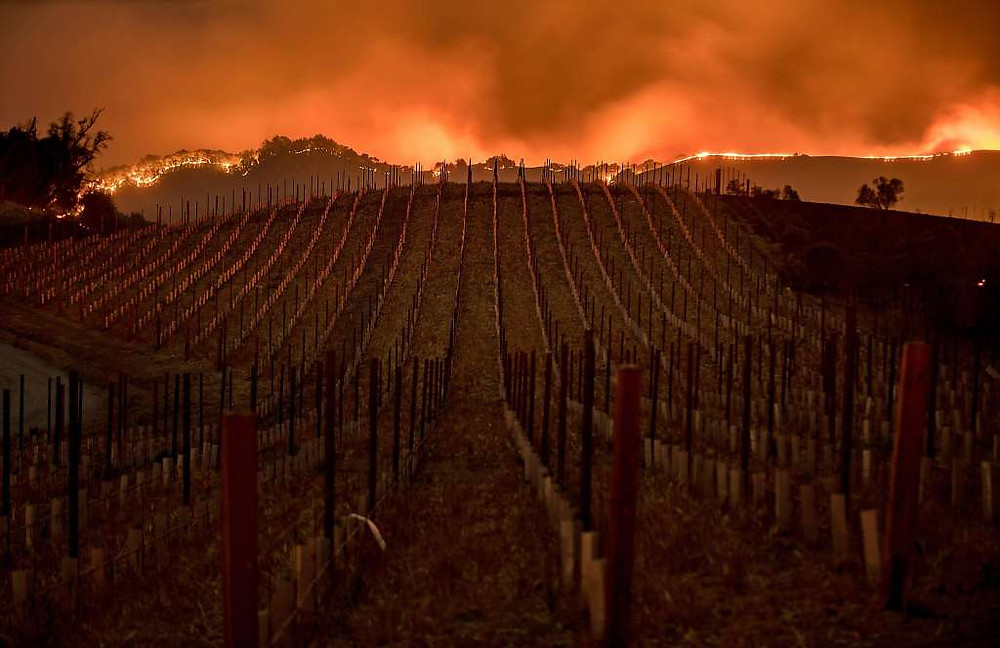 Fires in Wine Country