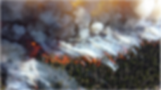 Wildfire 2.png