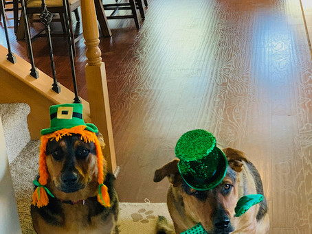 St. Patrick's Day, Spring Shamrocks, Preparing for 2nd Vaccine