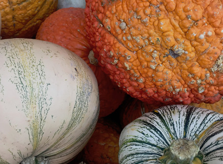 Ghouls, Gourds, and Grass