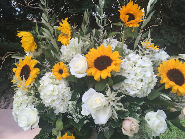 Sunflowers spell summer